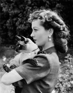 Vivien Leigh - and her lovely kitty. Knowing the history, I am not surprised.