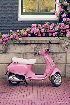 Pink Scooter ♡