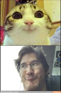 I see no difference... <---haha either way, both are cute and I would love to have them :D