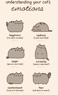 20 Reasons Why Pusheen The Cat Would Make The Perfect Boyfriend