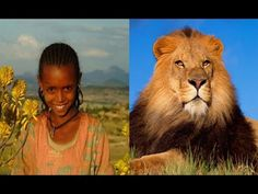 6 Unbelievable WILD Animals That Actually Saved People's Lives - YouTube