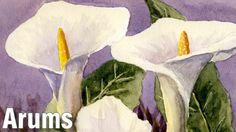 Online Art Class - How to Paint Arum (Calla) Lilies - Paint Basket TV