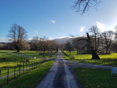 A great place to go for a walk in Killarney is the National Park and the grounds of Muckross House. Great walking tracks suitable for all kinds of walkers & buggies. Below are some photos, the …