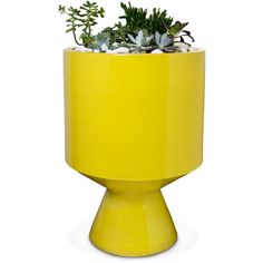 Jonathan Adler Yellow Okura Planter (41,040 PHP) ❤ liked on Polyvore featuring home, outdoors, outdoor decor, modern outdoor planters, outside planters, pottery planters, outdoor patio decor and outdoor pottery planters