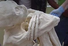 A video shows a mummified humanoid said to have been found in Peru near the Nazca lines that has an elongated skull, 3-fingered hands and 3-toed feet.