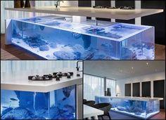 Interesting modern kitchen in an aquarium in the kitchen counter