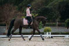 With you I float  #equestrian #equestrianstockholm #horse #horses #equestrianperformance