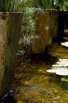 Resultado de imagem para pequena queda d'água com flores e pedras
