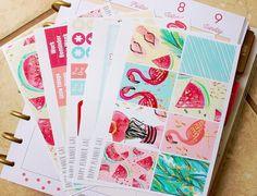 Wild Air Kit / Erin Condren Weekly Sticker Kit