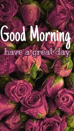 Good Morning Images, Good Morning Quotes, Dont Forget To Smile, Morning Blessings, Have A Great Day, More Fun, Lily, Inspirational Quotes, Nu Skin