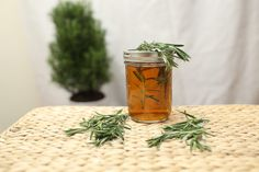 Keep your brain active and healthy with this DIY Rosemary Memory Elixir! This elixir can be used daily to support memory health. It's made using dried herbs in order to store the mix long term, but you can certainly make it with fresh herbs if you wish! Healing Herbs, Medicinal Herbs, Natural Medicine, Herbal Medicine, Herbal Remedies, Natural Remedies, Rosemary Water, Rosemary Plant, Natural Kitchen