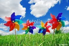 pinwheel on the meadow at sunny day