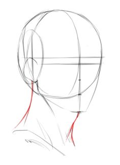 Drawing The Foundations For The 3/4 View Of The Male Head Anatomy Sketches, Anatomy Drawing, Art Drawings Sketches Simple, Anatomy Art, Pencil Art Drawings, How To Draw Anatomy, Horse Drawings, Drawing Reference Poses, Drawing Poses