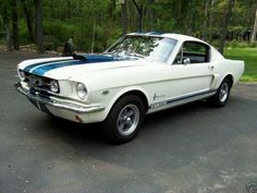 1965 Shelby GT Mustang... My dream car!