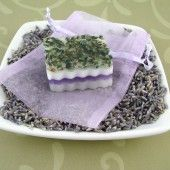 Using Herbs and Colorants: Lavender Herb Soap