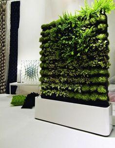 vertical-garden for indoor