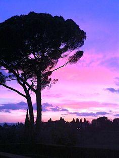 A violet, blue, & pink sunset in Florence