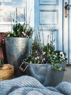My work for IKEA Livet hemma (styling & photo) pt: 19 – Vårsådd & plantering Purple Garden, Green Garden, Outside Living, Outdoor Living, Ikea Outdoor, Vibeke Design, Indoor Plant Pots, Terrace Garden, Gardens