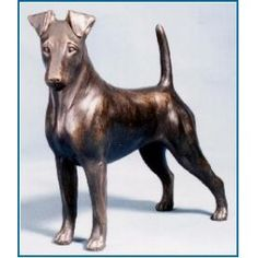 Smooth Fox Terrier - Dannyquest