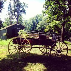 Our antique market wagon was dragged out and cleaned today. It is one of the many decorations we will be using for Chrissy and Ryan's wedding on the hill this weekend. Chrissy is one of the girls that grew up riding, volunteering and living at Little Brook Farm!