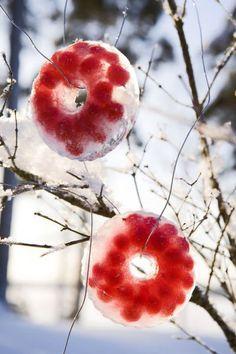 IJskrans met bessen ✶ Vul kleine tulbandvormpjes met water en bessen. ✶ Als het ijs smelt, kunnen de vogels de besjes opeten.