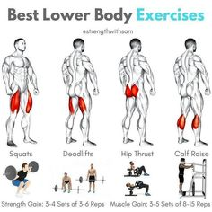 Quadriceps: Squats (Back or Front)Hamstrings: Conventional DeadliftGlutes: Hip ThrustCalves: Standing Calf Raise__Each of these exercises should be included in your lower body training plan for optimal development.__For primaril Fitness Workouts, Weight Training Workouts, At Home Workouts, Fitness Tips, Fitness Nutrition, Fitness Motivation, Body Workouts, Killer Leg Workouts, Bodybuilding Motivation Quotes