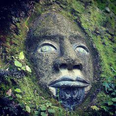 Photo from the Instacanvas gallery for billiebop. Rock art at Lochmara Lodge, Marlborough Sounds NZ.