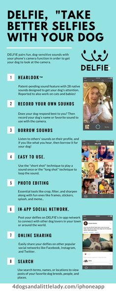 """DELFIE, the New iPhone App That Helps You """"Take Better Selfies With Your Dog,"""" is Now Available Globally, Downloads Support Animal Charities"""