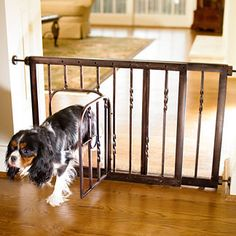 Stylishly restrict your pet's access in your home with the Expanding Tension Mount Pet Gate; with a small door to easily allow access when you want. Indoor Dog Gates, Pet Barrier, Pet Gate, Dog Rooms, Yorkshire Terrier Puppies, Tubular Steel, Luxury Home Decor, Or Antique, Dog Care