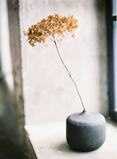 wabi-sabi by Special Day, Max Koliberdin, Decorate Your Life, Anna Runge and Daniil Borisov