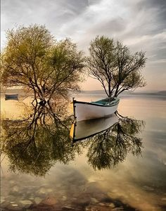 Beautiful reflections by
