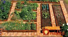 16 Amazing DIY Garden Paths And Walkways is part of DIY garden Layout - Here are 16 Amazing DIY Garden Paths And Walkways to help you get inspired Backyard Vegetable Gardens, Vegetable Garden Design, Diy Garden, Garden Projects, Garden Paths, Garden Landscaping, Outdoor Gardens, Dream Garden, Garden Boxes