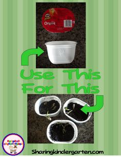 Use Pringle Snack containers as planters! GREAT idea! See blog comments for other uses for these containers.