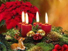 Kahvakuula kainalossa: Rauhaisaa joulun aikaa!