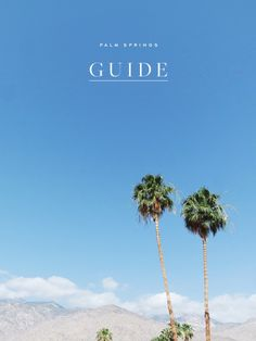 What to See, Do and Eat in Palm Springs: The Ultimate Travel...