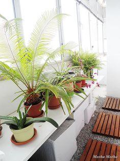 Meeha Meeha: White And Green Balcony