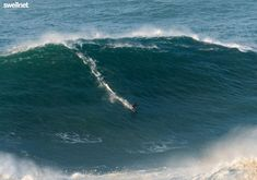 Daily Surf Reports, Detailed Surf Forecasts, Live Streaming Surfcams, Surf Photos, Surf News, Surf Videos | Swellnet