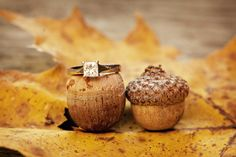 Fall wedding ideas | Shelby Studios Photography ♥