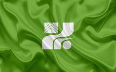 Download wallpapers Flag of Tochigi Prefecture, green flag, Japan, 4k, silk flag, Tochigi, symbols of Japanese prefectures, emblem