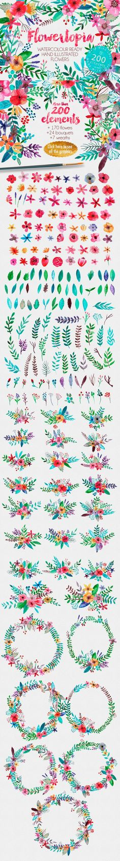 clip art feminine watercolor flowers floral hand illustrations