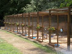 The Best 75 Creative and Low-Budget DIY Chicken Coop Ideas for Your Backyard https://decoredo.com/5726-75-creative-and-low-budget-diy-chicken-coop-ideas-for-your-backyard/