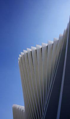 Santiago Calatrava - architecture detail