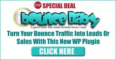 Brand new WordPress plugin captures bounce traffic and redirects it to any URL you want Bounce Baby Plugin