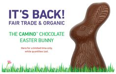 Everyone's favourite #FairTrade chocolate bunny is back! Limited quantities available so hop on over and get yourself a #fairtrade #organic treat! #easterbunny
