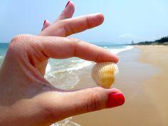 Пляж, Морская Раковина, Ноготь На Пальце Ноги, Лак