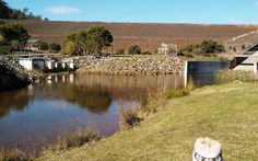 Churchman Brook Dam, Armadale - Buggybuddys guide for families in Perth Kids Picnic, Picnic Spot, Water Catchment, Wave Rock, Great Walks, Forest Floor, Castle Rock, Mother Of Dragons, Family Outing