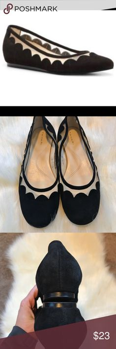 Elie TAHARI Daisy flat Black suede flats with scalloped and mesh edge. Flats outsole is in EUC-inside has a couple scuffs. Please see pics. Tahari Shoes Flats & Loafers
