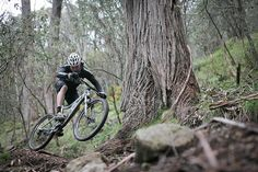 Mount Buller mountain bike trail, Mansfield (Australia) Photo: Sam Doman.