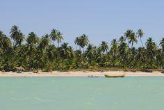 Maceió: as principais praias da capital do Alagoas IPIOCA Mais deserta e perfeita para quem quer relaxar, a praia de Ipioca é bem menos frequentada e possui o quiosque Hibiscus, com espreguiçadeiras, redes e massagens à sombra das palmeiras. Na maré baixa, o mar fica bem calmo com longos trechos de areia e piscinas naturais, mas na maré alta fica bem mais agitado. Fica a 24 quilômetros do centro da cidade.