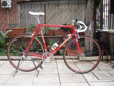 un desiderio avverato!! ci presento ROSSANA daccordi miticoo - Bici da corsa | bdc-forum.it